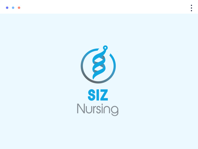 box-logo-SIZ